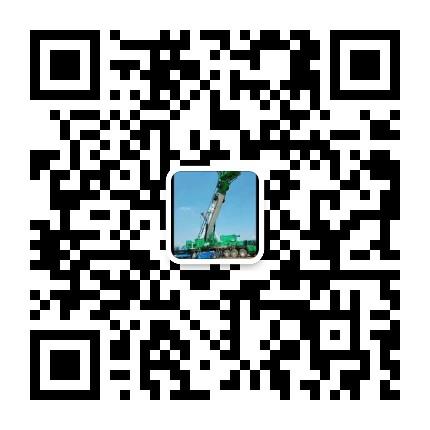 海南汽车吊租赁.jpg